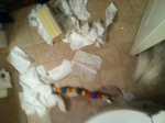 Evidence of mischevious Baxter's obsession with paper bathroom supplies.