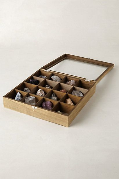 curio collector's box anthropologie